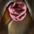 The Lord's Prayer: Holy is Your Name…